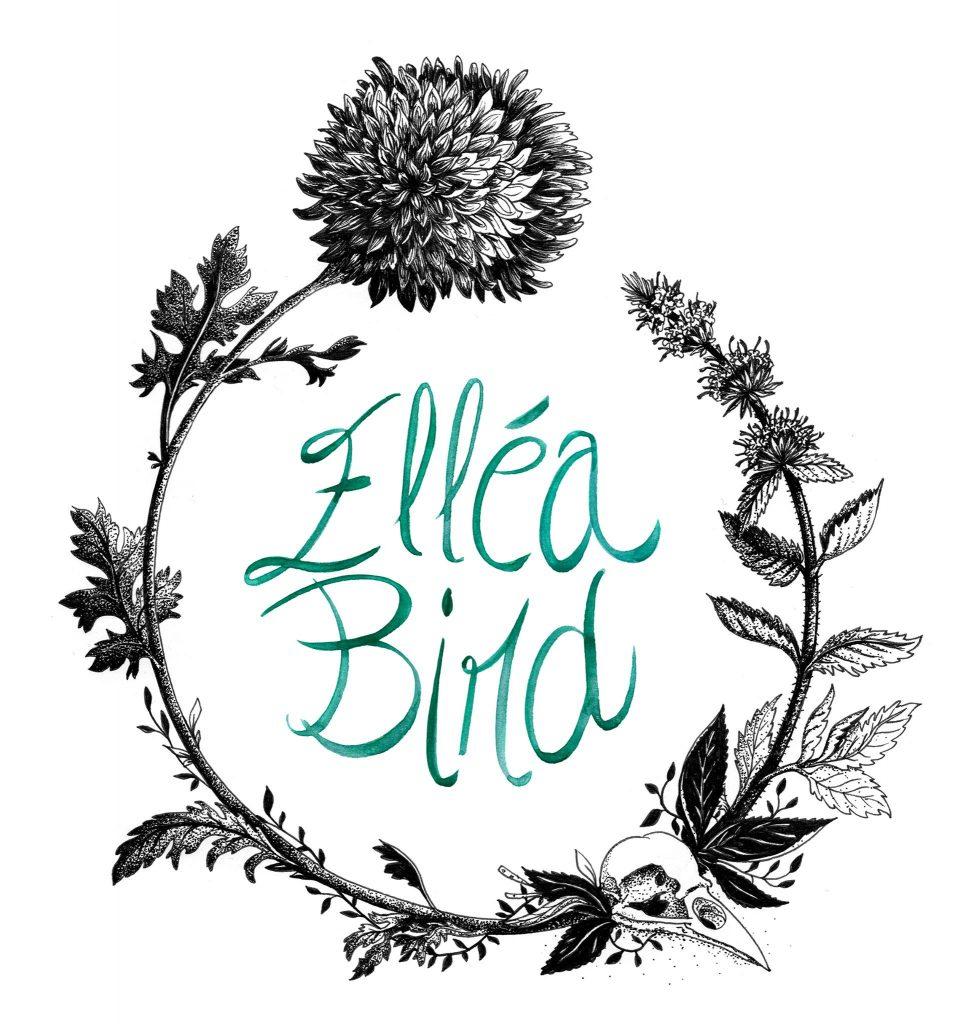 Elléa Bird illustration, Illustratrice, illustrator, Lyon